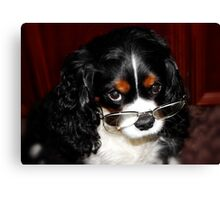 Are You Talking About Me !!! Canvas Print