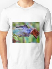 Art of autumn: Colorful dry leaf Unisex T-Shirt