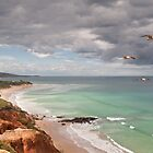 Southern Flyby,Anglesea,Great Ocean Road by Darryl Fowler