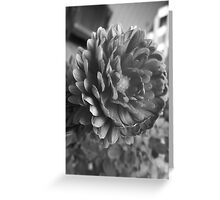 Flora GreyScale Greeting Card