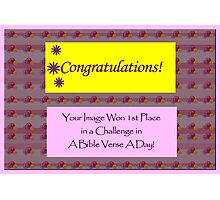 Banner - ABVAD - Challenge Winner Photographic Print