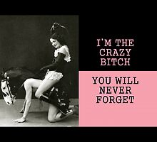 I`m the crazy bitch..... by slantedmind