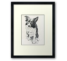 Drawing of Indy Framed Print