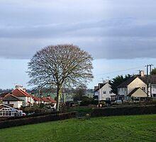 Homes Around Uplyme Devon UK by lynn carter