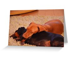 Daschunds enjoying open log fire Greeting Card