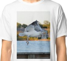 Larus Occidentalis - Western Gull | Center Moriches, New York  Classic T-Shirt