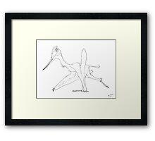 A Cocky Walk Framed Print