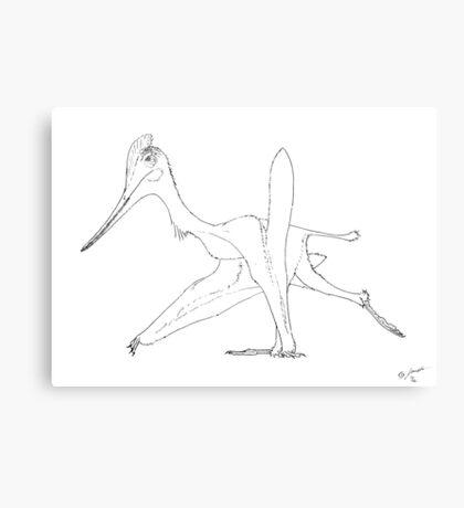 A Cocky Walk Canvas Print