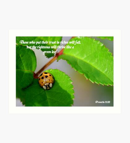 Proverbs 11:28 Art Print