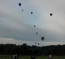 Battle Creek Hot Air Balloons by Tina Logan