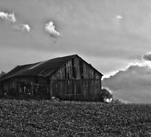 Barn near Sandusky, MI by Tina Logan