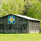 Kentucky Barn Quilt - Eight-Pointed Star by Mary Carol Story