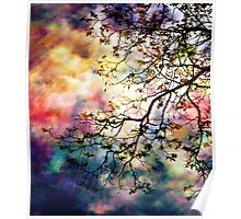 The Tree of Many Colors Poster