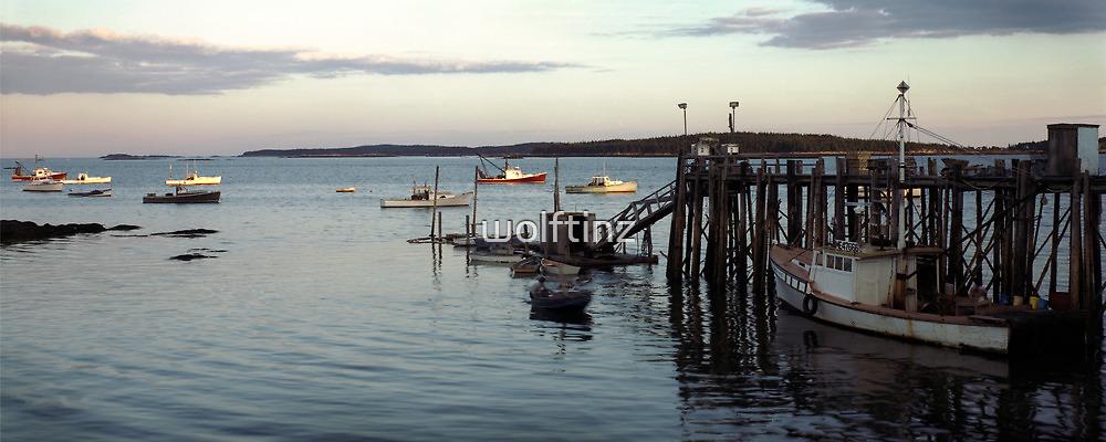 Sunset, Jonesport Harbor, Maine by wolftinz