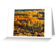 Conway Summit, Mono County, CA Greeting Card