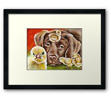 Chicksitting Afternoon Framed Print