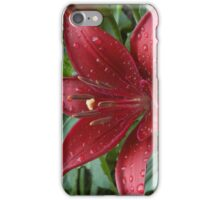 Red Asiatic Lily in Morning Dew iPhone Case/Skin