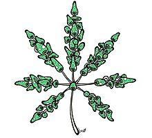 Marijuana Leaf Made of Mushrooms (green version) Photographic Print