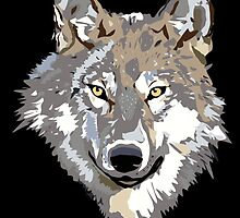 Wolf by pjwuebker