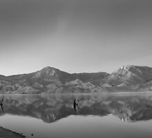 Fishing and Reflecting by Corri Gryting Gutzman