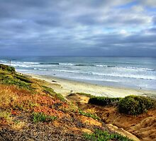 San Diego Beach by Diana Graves Photography
