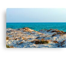 Over the Sand Dune Canvas Print