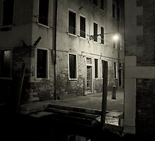 Venice by night by nikavero