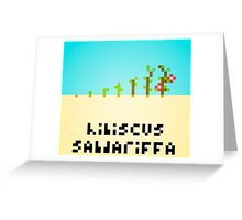 Hibiscus Sabdariffa Greeting Card