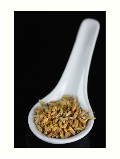 Fennel Seeds by SmoothBreeze7