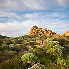 Cape Naturaliste. by Peter Hodgson