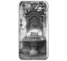 Fountain at Szentharomsag Ter iPhone Case/Skin