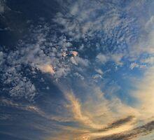 Cloud 20120811-36 by Carolyn  Fletcher