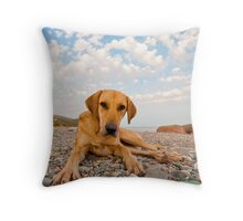 Playful Dog On The Beach Throw Pillow