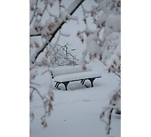 Lonely Bench with a Cover of Snow Photographic Print