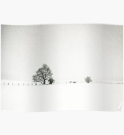 Tree and fence in a snowstorm Poster