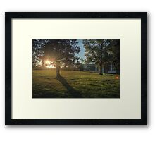 Campus Sunflare Framed Print
