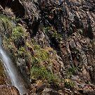 Lesmurdie Falls // 2 by Evan Jones