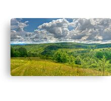 Walking into the Clouds Metal Print