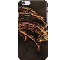 Duo of Grass in golden autumn light v2 iPhone Case/Skin