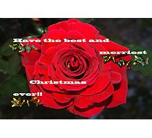 Firefighter rose Christmas card Photographic Print
