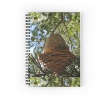 Pine Cone Fresh Spiral Notebook