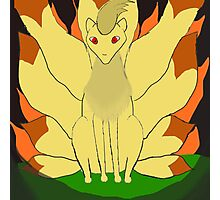 Nintails sitting in fire Photographic Print