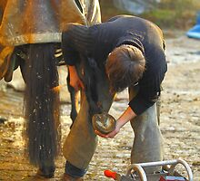 Farrier,s Lot by Stephen J  Dowdell
