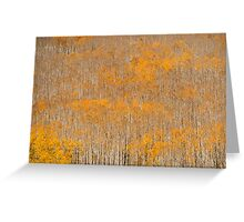 Aspen Brushes Greeting Card
