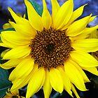 SunFloweR by Culrick99