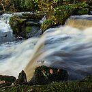 Rivelin Valley Falls by John Dunbar