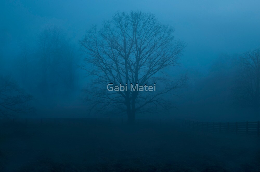 Quiet by Gabi Matei