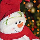 Frosty Christmas 1 by Dawne Dunton