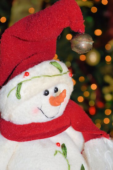 Frosty Christmas 1 by ©Dawne M. Dunton