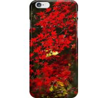 Red Maple Leafs iPhone Case/Skin